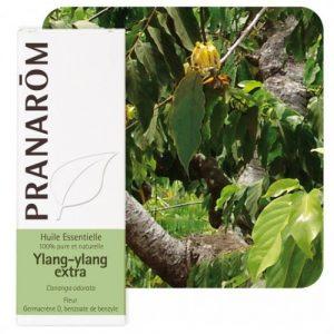 HE_ylang_ylang_pranarom-500x539