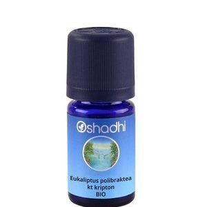 eukaliptus-polibraktea-kripton-organsko-etericno-ulje-5ml-oshadhi